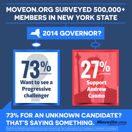 NY Governors Race Survey Results